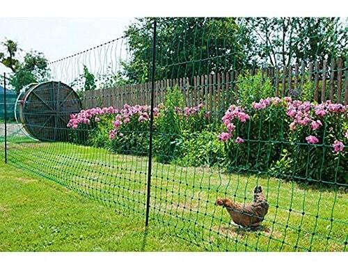 Hühnerzaun / Hühnernetz