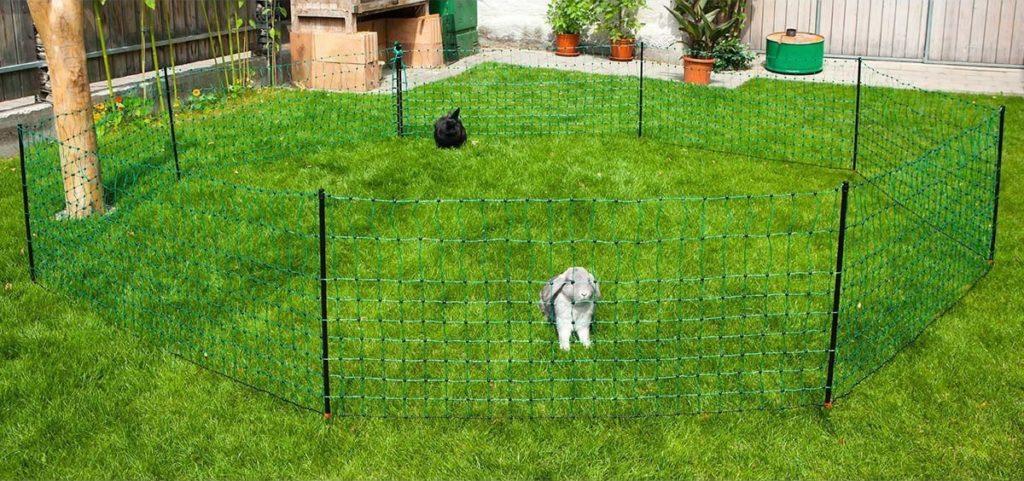 Weidezaun Info - Weidezaun kaufen - Kaninchennetz