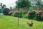 Kerbl Geflügelzaun Geflügelnetz nicht elektrisch Hühnernetz Hühnerzaun